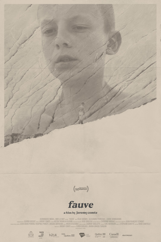 FAUVE-poster